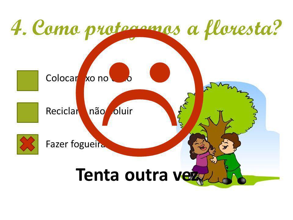 Colocar lixo no chão Reciclar e não poluir Fazer fogueiras 4. Como protegemos a floresta? Tenta outra vez