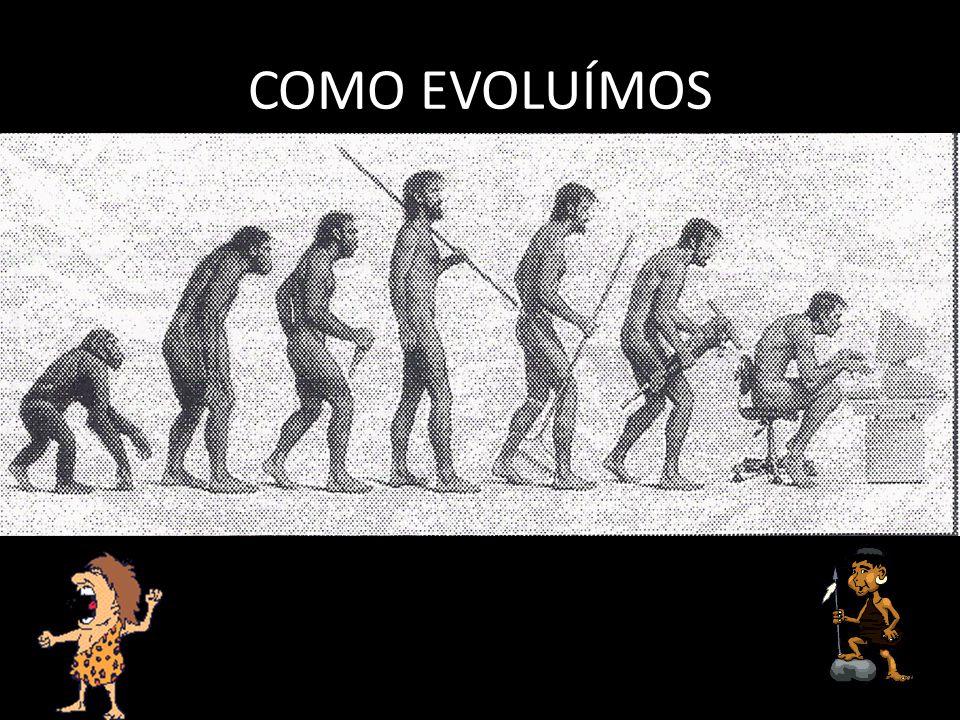 COMO EVOLUÍMOS