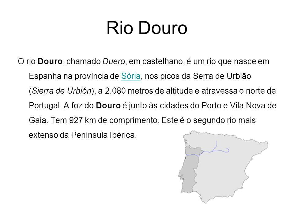 Rio Douro O rio Douro, chamado Duero, em castelhano, é um rio que nasce em Espanha na província de Sória, nos picos da Serra de Urbião (Sierra de Urbi