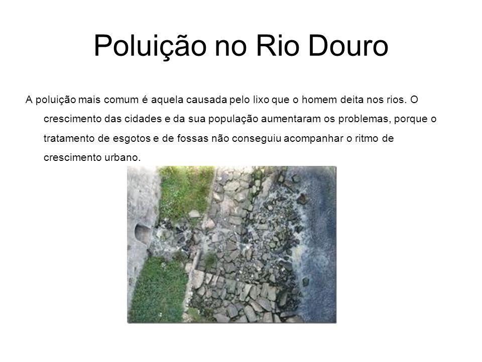 Poluição no Rio Douro A poluição mais comum é aquela causada pelo lixo que o homem deita nos rios. O crescimento das cidades e da sua população aument