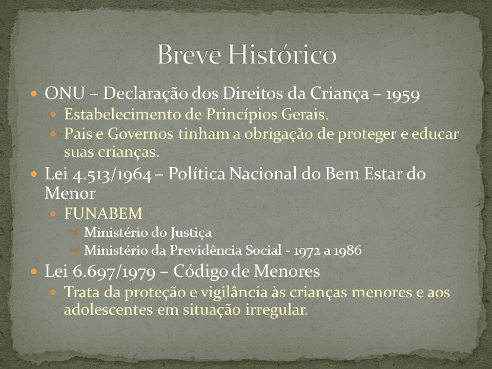Movimento no Brasil – 1980 Nova consciência e postura em relação à população infanto-juvenil.