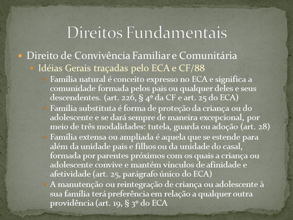 Direito de Convivência Familiar e Comunitária Idéias Gerais traçadas pelo ECA e CF/88 Família natural é conceito expresso no ECA e significa a comunid