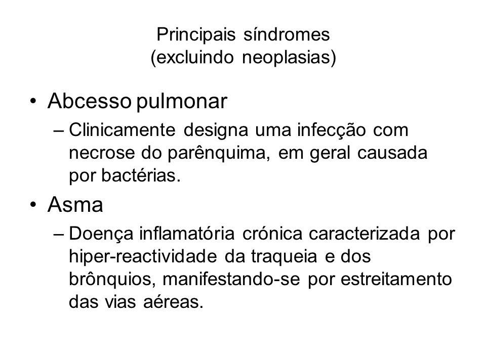 Principais síndromes (excluindo neoplasias) Abcesso pulmonar –Clinicamente designa uma infecção com necrose do parênquima, em geral causada por bactér