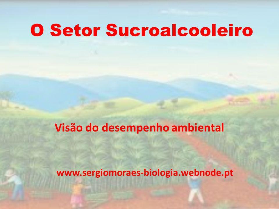 O Setor Sucroalcooleiro Visão do desempenho ambiental www.sergiomoraes-biologia.webnode.pt