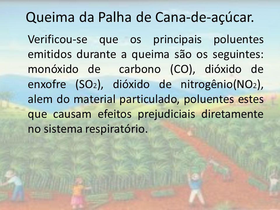 Queima da Palha de Cana-de-açúcar. Verificou-se que os principais poluentes emitidos durante a queima são os seguintes: monóxido de carbono (CO), dióx