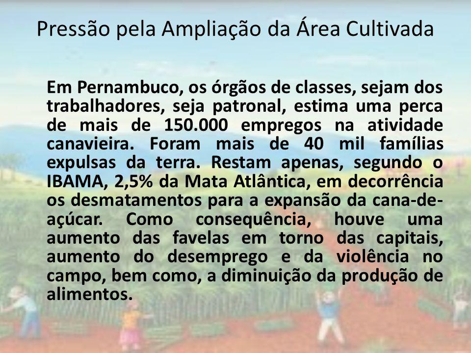 Pressão pela Ampliação da Área Cultivada Em Pernambuco, os órgãos de classes, sejam dos trabalhadores, seja patronal, estima uma perca de mais de 150.