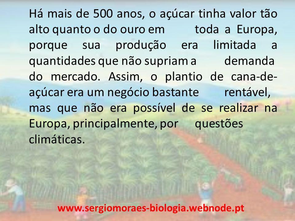 Com o avanço das Grandes Navegações do século XVI, os europeus se lançaram em busca de novas terras e um dos objetivos dos portugueses era a plantação de cana para produção de açúcar.