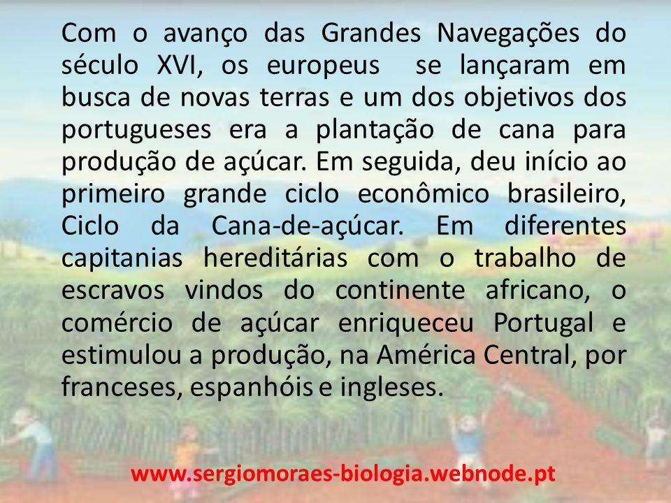 Com o avanço das Grandes Navegações do século XVI, os europeus se lançaram em busca de novas terras e um dos objetivos dos portugueses era a plantação