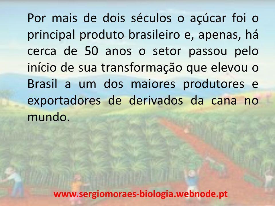 Por mais de dois séculos o açúcar foi o principal produto brasileiro e, apenas, há cerca de 50 anos o setor passou pelo início de sua transformação qu