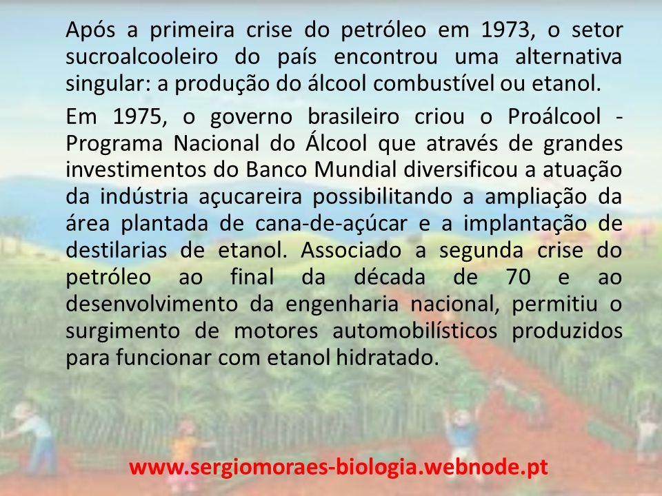 Em meados da década de 80, cerca de 95% da produção das montadoras no Brasil era de carros movidos a etanol mas em 2001 esse percentual chegou a 1,02% da frota nacional devido a redução da crise do petróleo e planos internos de combate a inflação.