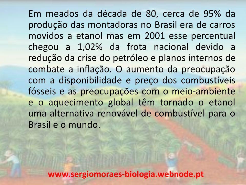 Em meados da década de 80, cerca de 95% da produção das montadoras no Brasil era de carros movidos a etanol mas em 2001 esse percentual chegou a 1,02%