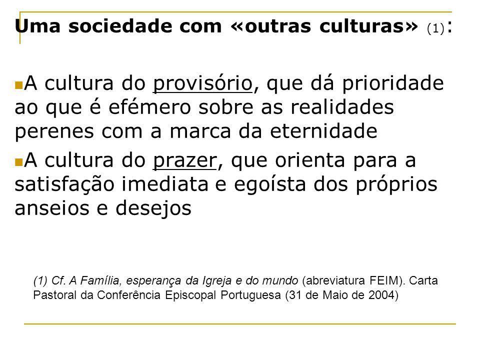 Uma sociedade com «outras culturas» (1) : A cultura do provisório, que dá prioridade ao que é efémero sobre as realidades perenes com a marca da etern