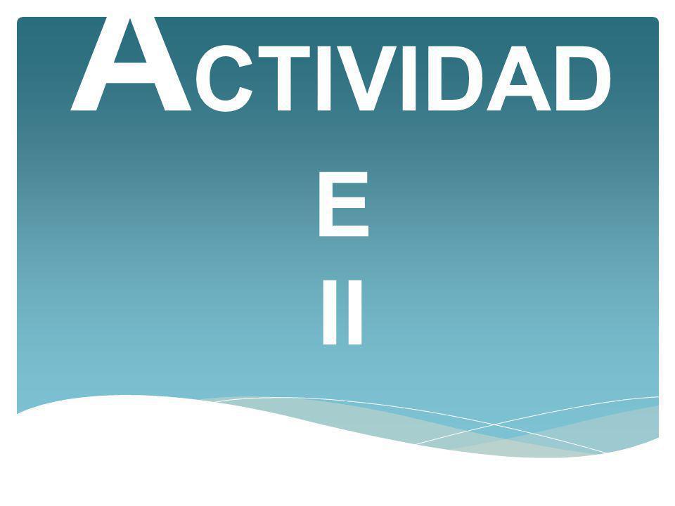 A CTIVIDAD E II