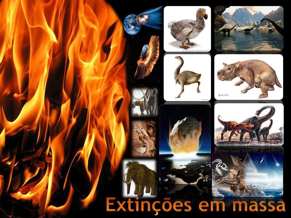 Extinção em Massa É um acontecimento relativamente comum no registo geológico que se caracteriza pelo decréscimo abrupto da biodiversidade através da extinção de vários grupos.