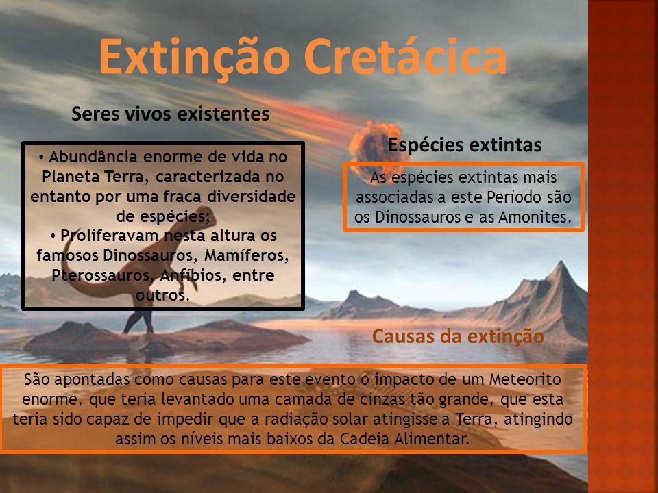 Extinção Cretácica Seres vivos existentes Espécies extintas Causas da extinção Abundância enorme de vida no Planeta Terra, caracterizada no entanto po