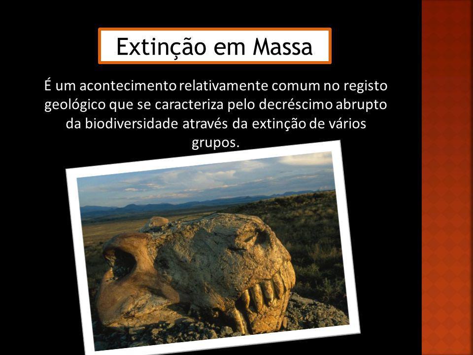 Extinções Cosmológicas Extinções Geológicas Impacto de um corpo vindo do espaço com a superfície terrestre Intensa actividade vulcânica Tectónica de Placas Transgressões e regressões marinhas