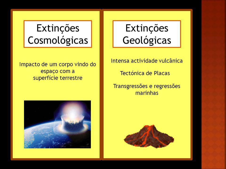 Extinções Cosmológicas Extinções Geológicas Impacto de um corpo vindo do espaço com a superfície terrestre Intensa actividade vulcânica Tectónica de P