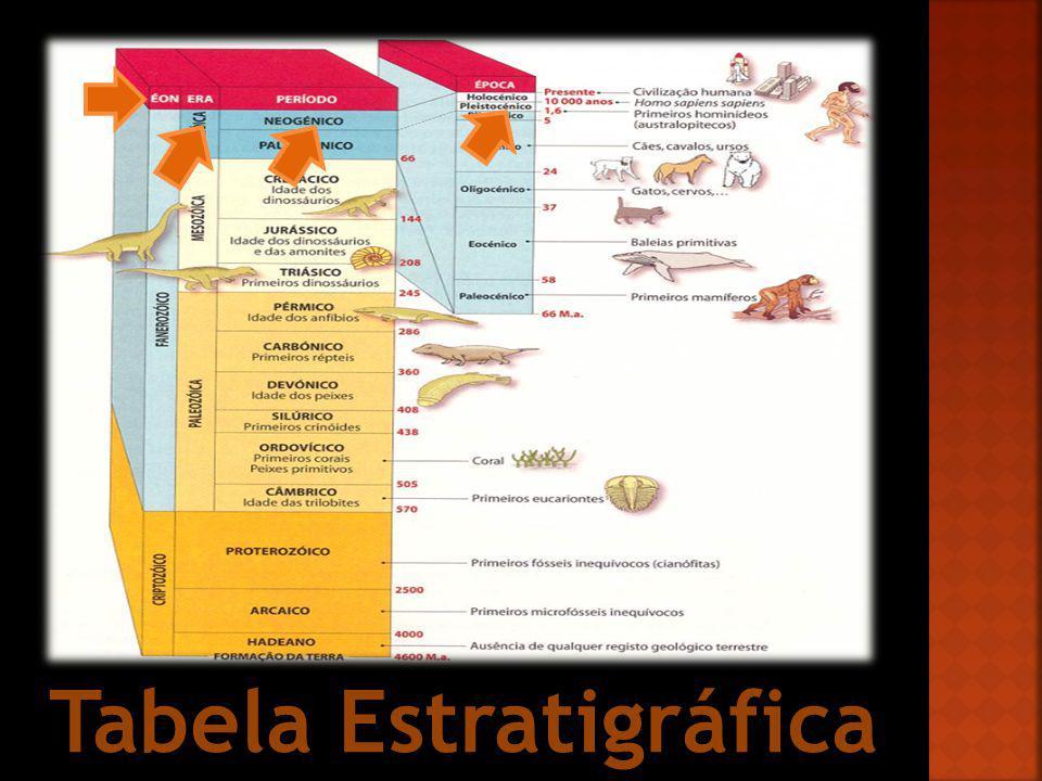 Tabela Estratigráfica