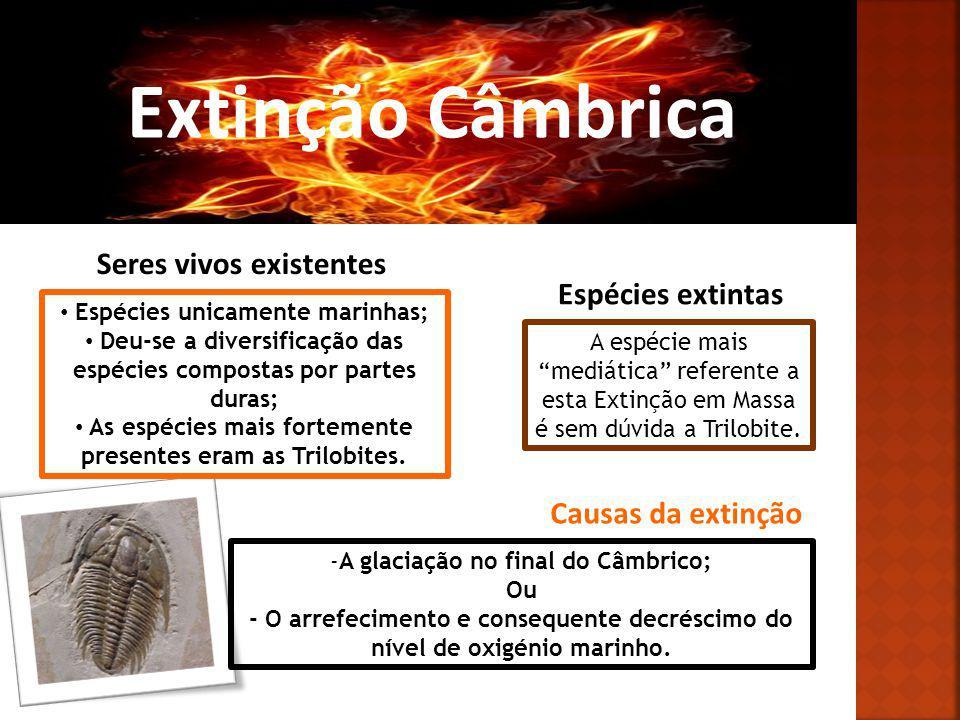 Extinção Ordovícica Seres vivos existentes Algumas espécies do Câmbrico; Aparecimento de Corais, Gastrópodes, Bivalves, entre outros.