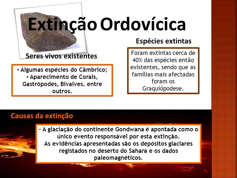 Extinção Ordovícica Seres vivos existentes Algumas espécies do Câmbrico; Aparecimento de Corais, Gastrópodes, Bivalves, entre outros. Espécies extinta