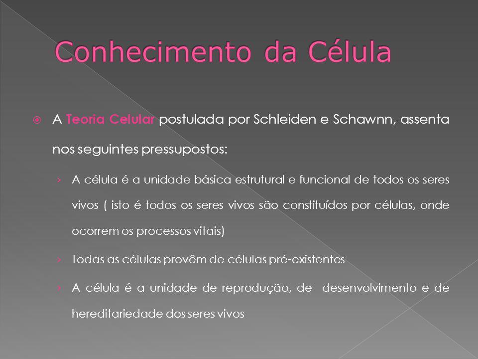 A Teoria Celular postulada por Schleiden e Schawnn, assenta nos seguintes pressupostos: A célula é a unidade básica estrutural e funcional de todos os