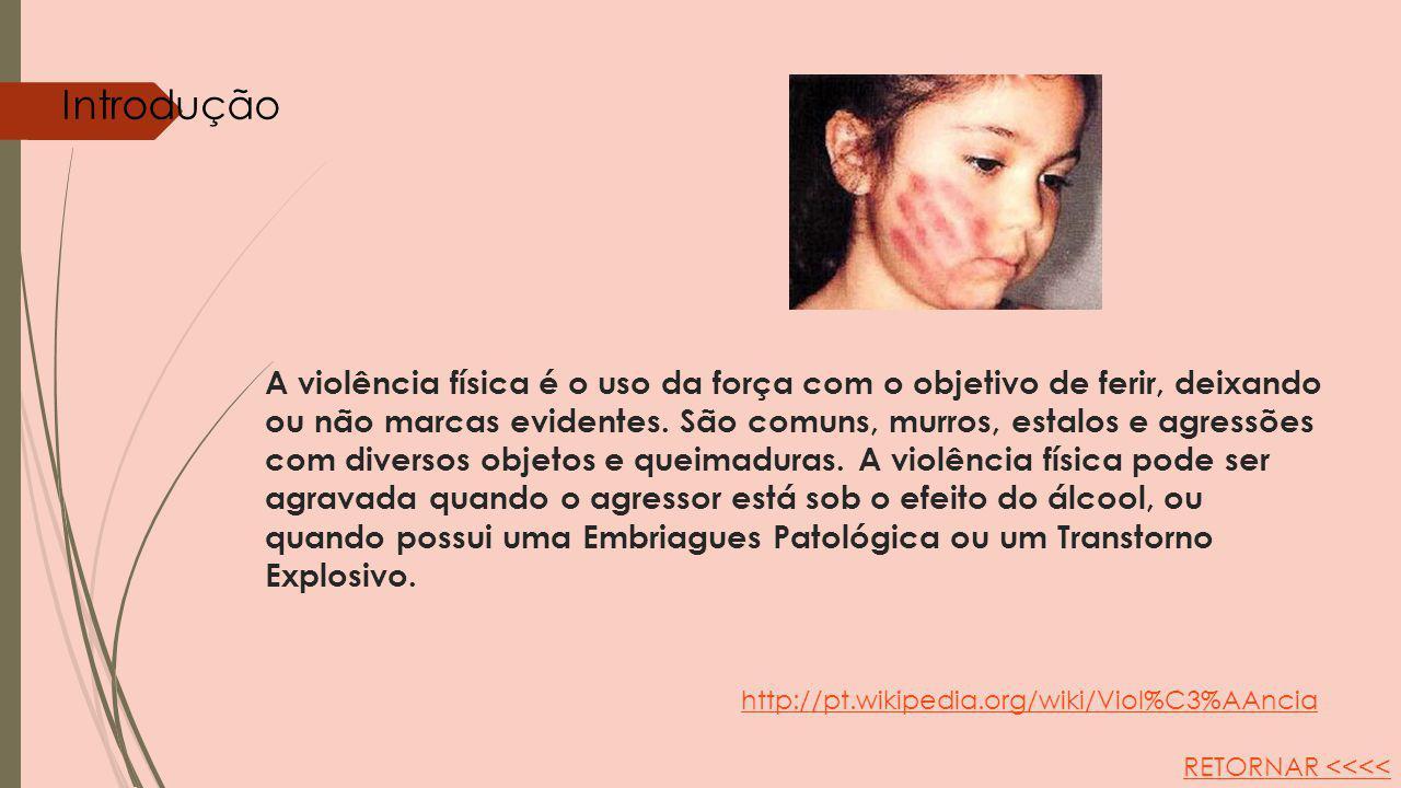A violência física é o uso da força com o objetivo de ferir, deixando ou não marcas evidentes. São comuns, murros, estalos e agressões com diversos ob