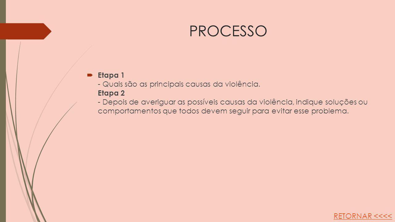 PROCESSO Etapa 1 - Quais são as principais causas da violência. Etapa 2 - Depois de averiguar as possíveis causas da violência, indique soluções ou co