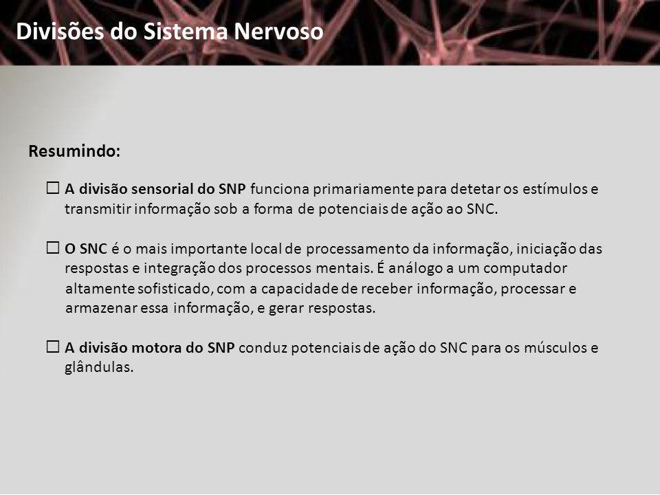 Divisões do Sistema Nervoso Resumindo: A divisão sensorial do SNP funciona primariamente para detetar os estímulos e transmitir informação sob a forma