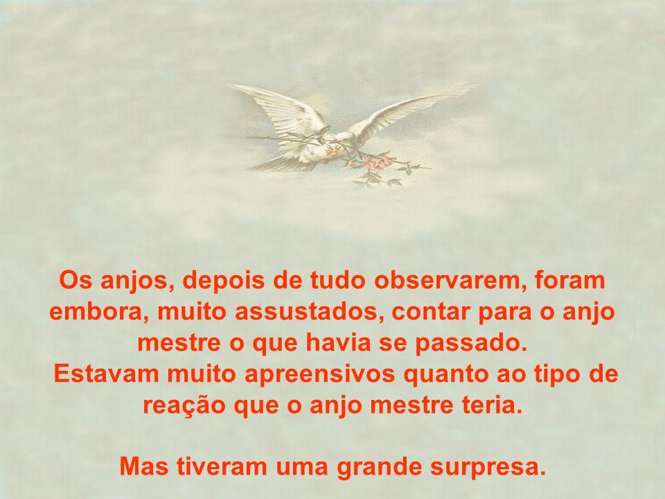 Os anjos, depois de tudo observarem, foram embora, muito assustados, contar para o anjo mestre o que havia se passado. Estavam muito apreensivos quant