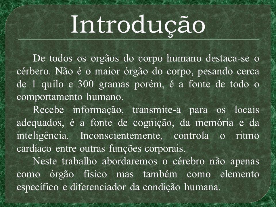 Introdução De todos os orgãos do corpo humano destaca-se o cérbero.