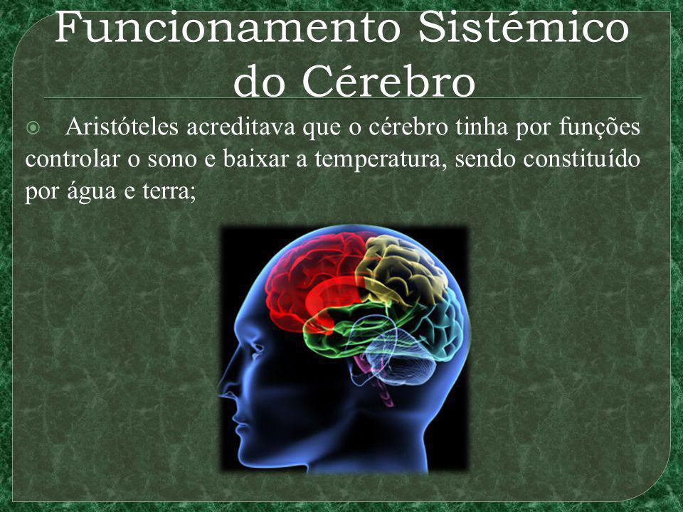 Funcionamento Sistémico do Cérebro Aristóteles acreditava que o cérebro tinha por funções controlar o sono e baixar a temperatura, sendo constituído por água e terra;