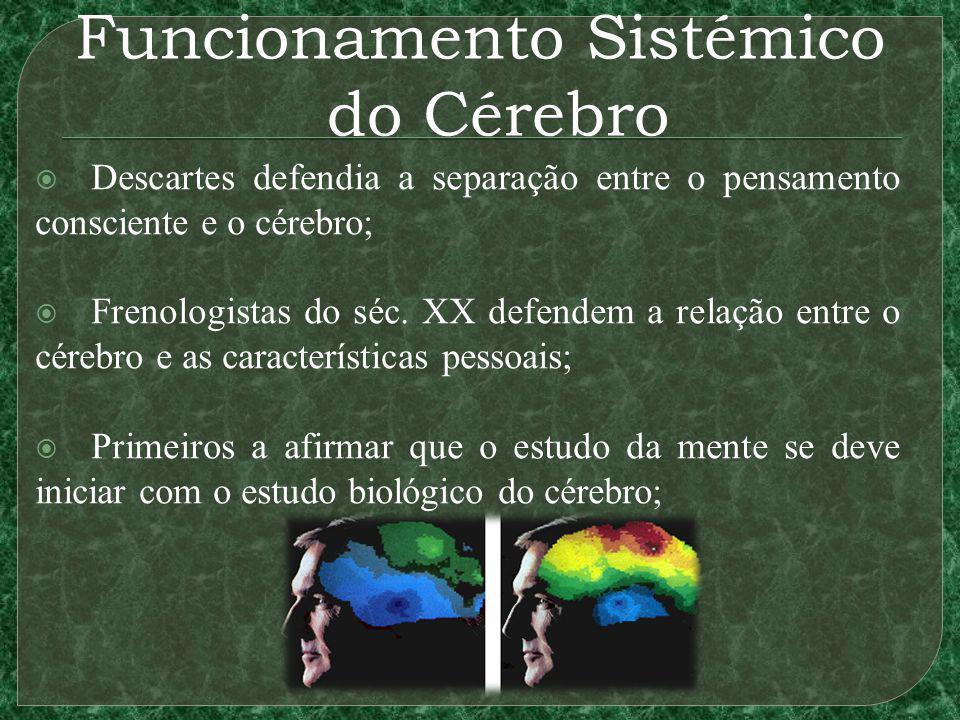Funcionamento Sistémico do Cérebro Descartes defendia a separação entre o pensamento consciente e o cérebro; Frenologistas do séc. XX defendem a relaç