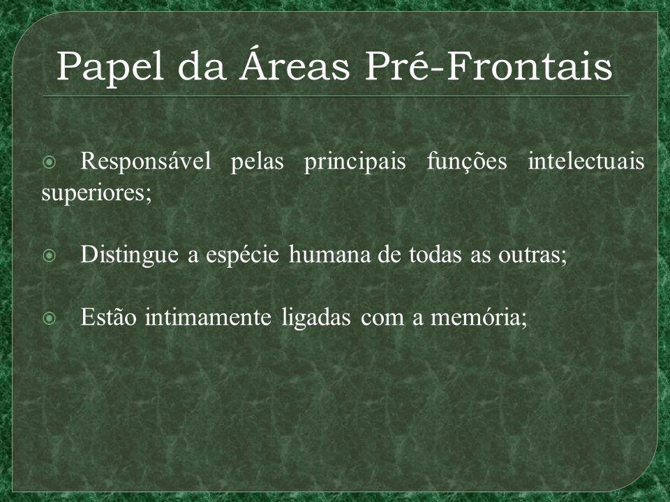 Papel da Áreas Pré-Frontais Responsável pelas principais funções intelectuais superiores; Distingue a espécie humana de todas as outras; Estão intimam