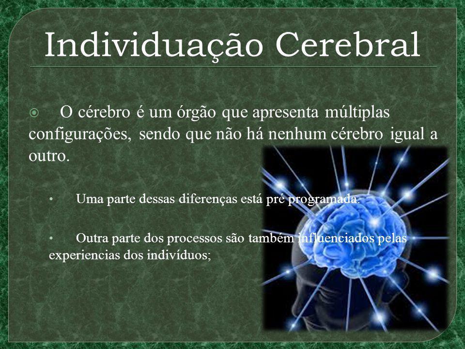 Individuação Cerebral O cérebro é um órgão que apresenta múltiplas configurações, sendo que não há nenhum cérebro igual a outro. Uma parte dessas dife