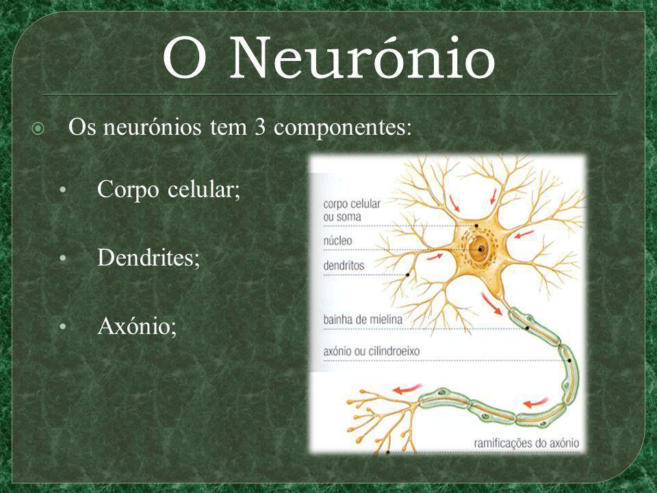 Elementos da Sinapse A terminação do neurónio emissor tem vesículas sinápticas; Contém neurotransmissores que, quando atingidos pelo impulso elétrico (influxo nervoso), se libertam na fenda sináptica;