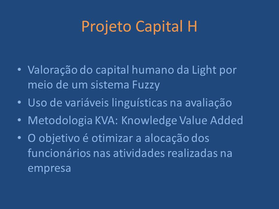 Projeto Capital H Valoração do capital humano da Light por meio de um sistema Fuzzy Uso de variáveis linguísticas na avaliação Metodologia KVA: Knowledge Value Added O objetivo é otimizar a alocação dos funcionários nas atividades realizadas na empresa