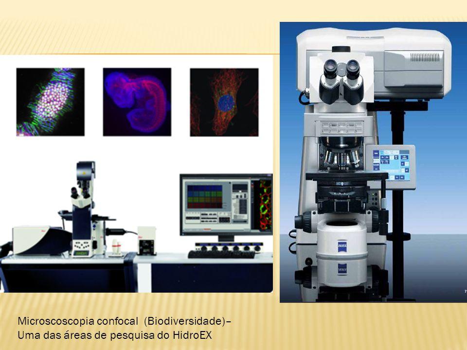 Microscoscopia confocal (Biodiversidade)– Uma das áreas de pesquisa do HidroEX