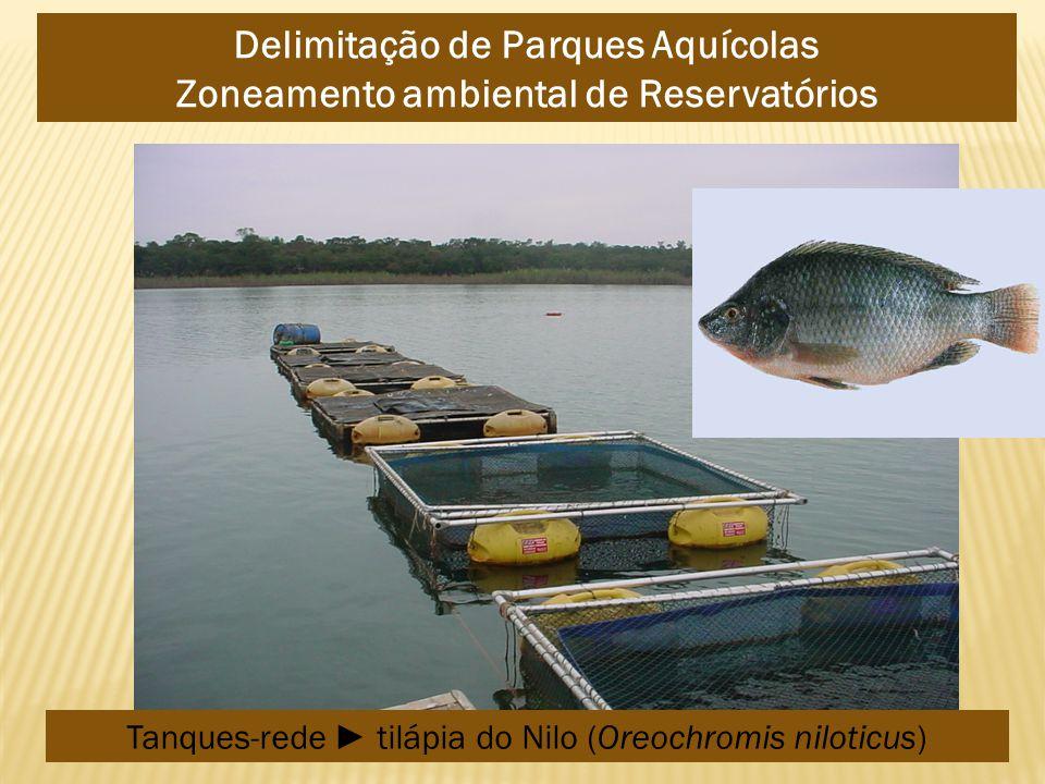 Delimitação de Parques Aquícolas Zoneamento ambiental de Reservatórios Tanques-rede tilápia do Nilo (Oreochromis niloticus)
