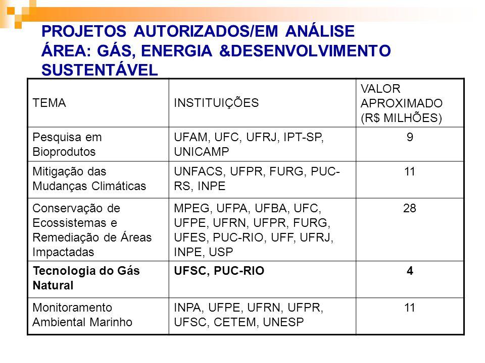 TEMAINSTITUIÇÕES VALOR APROXIMADO (R$ MILHÕES) Pesquisa em Bioprodutos UFAM, UFC, UFRJ, IPT-SP, UNICAMP 9 Mitigação das Mudanças Climáticas UNFACS, UF