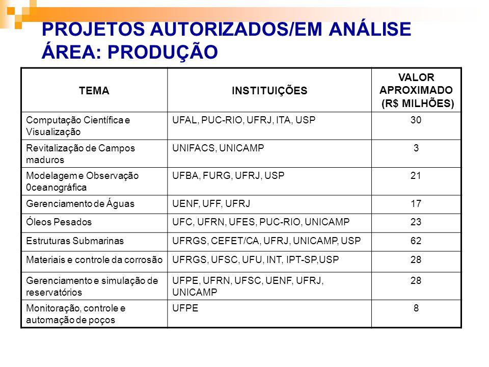 TEMAINSTITUIÇÕES VALOR APROXIMADO (R$ MILHÕES) Computação Científica e Visualização UFAL, PUC-RIO, UFRJ, ITA, USP30 Revitalização de Campos maduros UN
