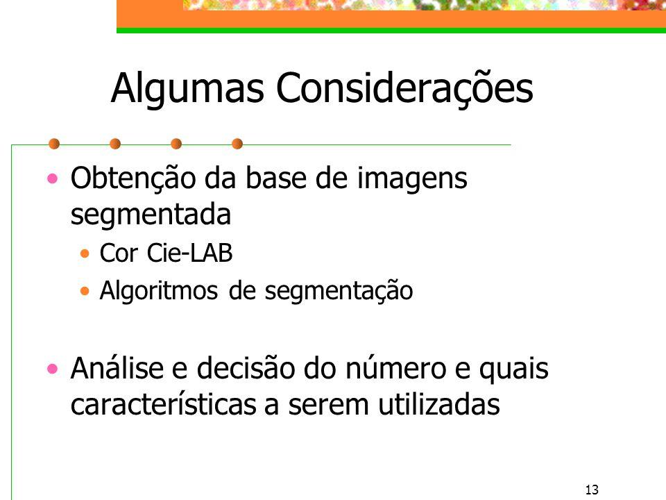 13 Algumas Considerações Obtenção da base de imagens segmentada Cor Cie-LAB Algoritmos de segmentação Análise e decisão do número e quais características a serem utilizadas