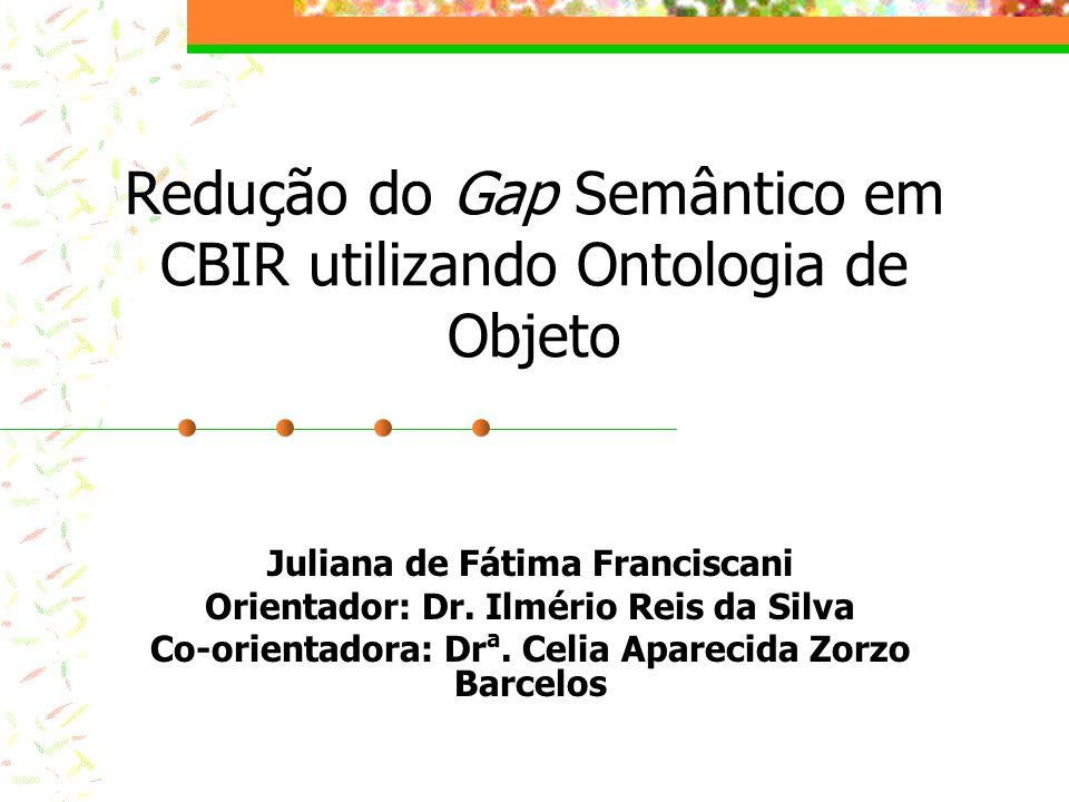Redução do Gap Semântico em CBIR utilizando Ontologia de Objeto Juliana de Fátima Franciscani Orientador: Dr.