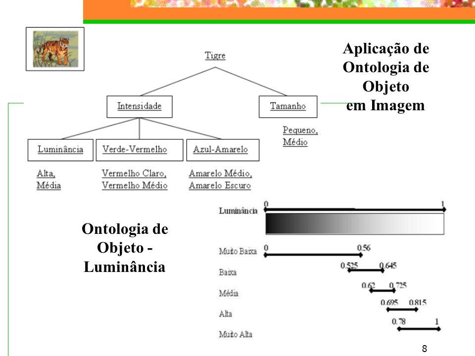 8 Aplicação de Ontologia de Objeto em Imagem Ontologia de Objeto - Luminância