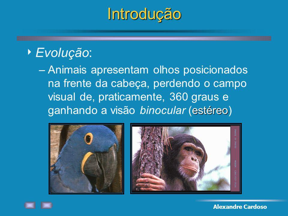 Alexandre CardosoIntrodução Evolução: estéreo –Animais apresentam olhos posicionados na frente da cabeça, perdendo o campo visual de, praticamente, 360 graus e ganhando a visão binocular (estéreo)