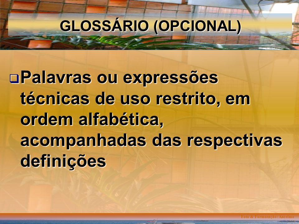 Foto & Formatação: Ancelmo GLOSSÁRIO (OPCIONAL) Palavras ou expressões técnicas de uso restrito, em ordem alfabética, acompanhadas das respectivas definições Palavras ou expressões técnicas de uso restrito, em ordem alfabética, acompanhadas das respectivas definições