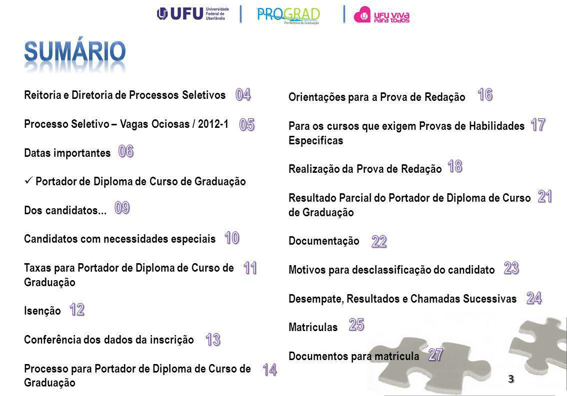 Reitoria Diretoria de Processos Seletivos PRÓ-REITOR DE EXTENSÃO, CULTURA E ASSUNTOS ESTUDANTIS Prof.