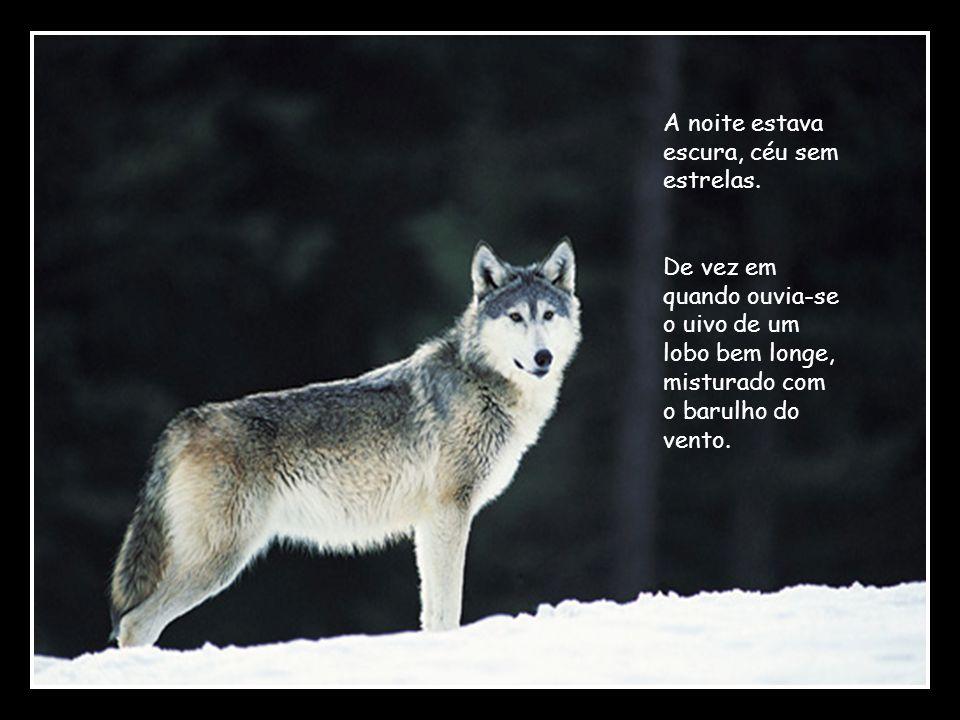 -Os lobos continuam a uivar.E continuam a ser perigosos.