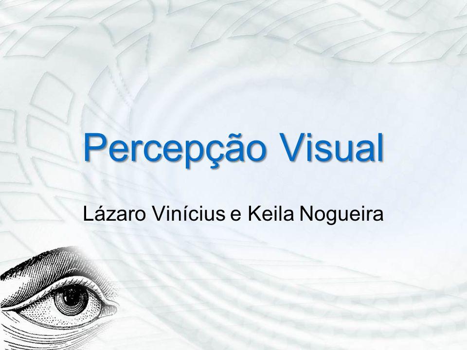 Percepção Visual Lázaro Vinícius e Keila Nogueira