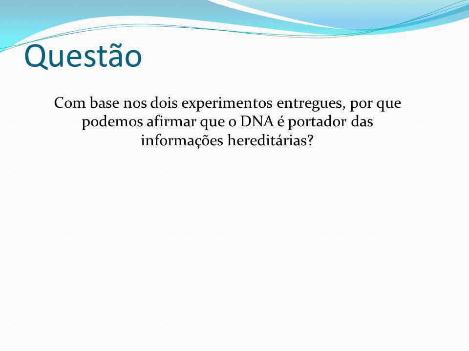 Questão Com base nos dois experimentos entregues, por que podemos afirmar que o DNA é portador das informações hereditárias?