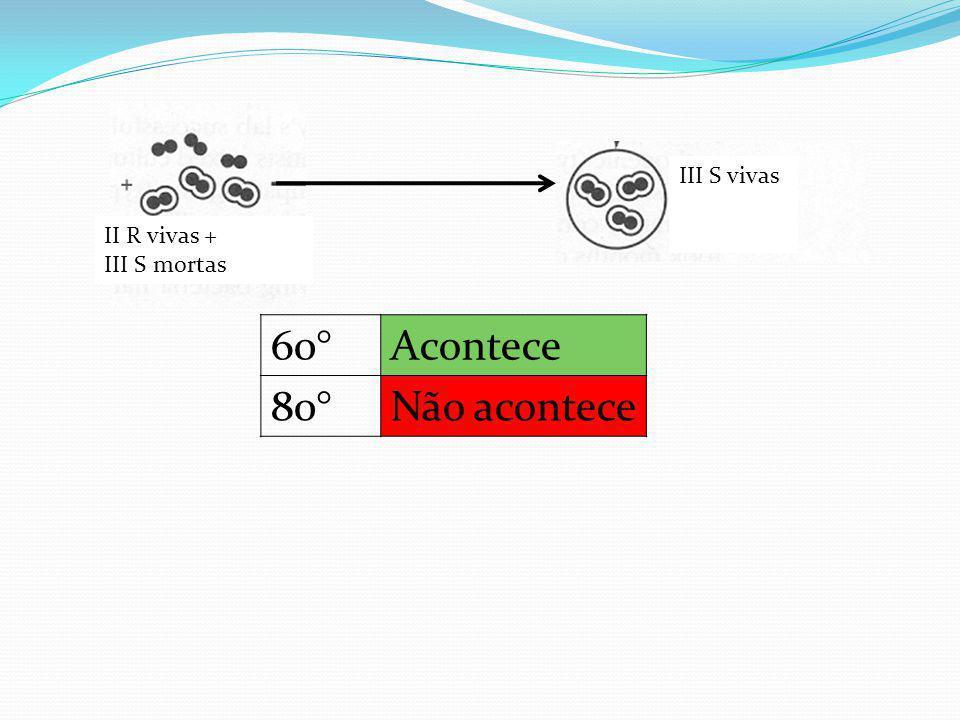 II R vivas + III S mortas III S vivas 60°Acontece 80°Não acontece